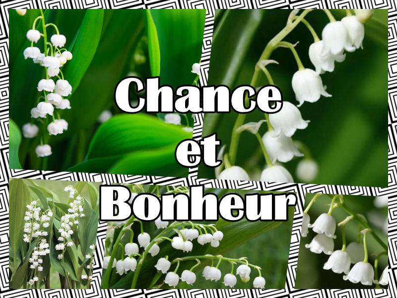 Chance et Bonheur
