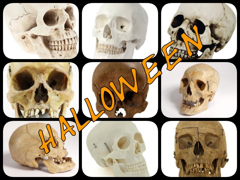 Halloween - crâne humain