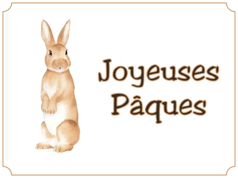 Joyeuses Pâques - Lapin