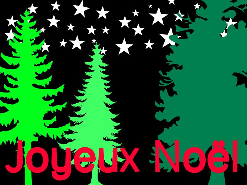 Joyeux Noël - Sapin la nuit